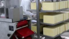 Packing Cheese in a Dairy Factory. - stock footage