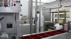 Factory For Production Of Cheese Packing 30Fps - stock footage