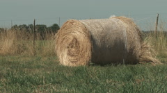 Farm hay bale Stock Footage