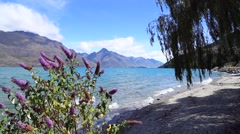Wakatipu lake in Queenstown, New Zealand, South Island. Stock Footage
