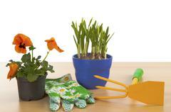 Flowerpots Stock Photos