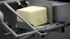 Cutting Cheese in a Dairy Factory Close Up 30 fps - stock footage