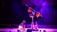 Stock Video Footage of woman Circus artist  Gymnast  Flexible Strong Stable