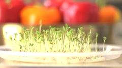Green spouts with peppers in the background Stock Footage