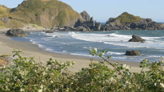 Lone Ranch Beach, Brookings, Oregon (zoom out) Stock Footage