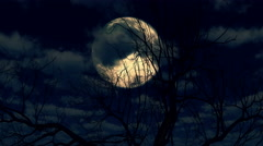 Moon rises through clouds and tree 4k Stock Footage