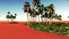 The oasis amidst desert 4k Stock Footage