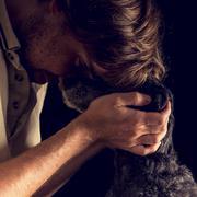 Loving man hugging his terrier dog Stock Photos
