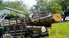 Tractor adds up felled timber into a heap, stock video Stock Footage