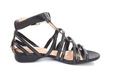 Female black sandal Stock Photos