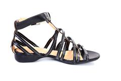 Female  sandal isolated Stock Photos