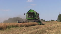 Agriculture combine machine harvest ripe dry pea plants in farm Stock Footage