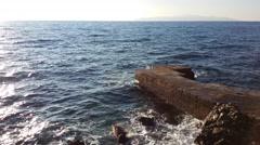 Cormorants on small old pier Stock Footage
