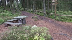 4k Hiking path restplace pan in mountain range Harz autumn forest - stock footage