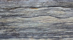 Geology - Sedimentary Structures Lenticular and flaser bedding. Stock Footage