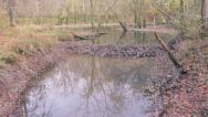 Stock Video Footage of Beaver Dam on Creek Season Transition Fall Changes to Winter