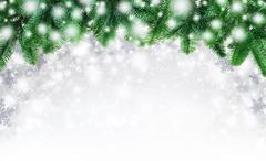 Fir twigs and snow background Stock Photos