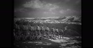 Turkish soldiers marching in hilly region Stock Footage