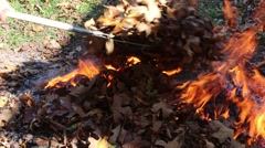 Dry Autumn Leaves Placed on Burning Pile with Rake Stock Footage