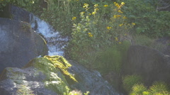 Slow motion waterfall, backlit water drops, Southern Oregon coast Stock Footage