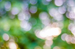 Bokeh and blur background Stock Photos