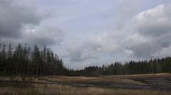 Stock Video Footage of 4k Moor landscape with dead trees pan mountain range Harz