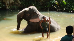 Mahout and elephant in the river Stock Footage