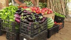 Organic Food Fruits Vegetables Farming Stock Footage