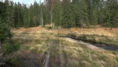 4k Path with spring of lake in a moor nature of mountain range Harz Stock Footage