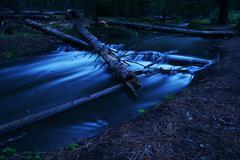 Water over log Stock Photos