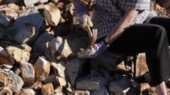 Fossil Excavation and Extraction Stock Footage