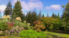 VanDusen Botanical Garden Sky Cloud Stock Footage