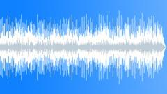 Hawaiian Don Ho Country Swing Bluegrass Arkistomusiikki