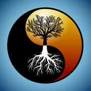 tree and it's roots in yin yang symbol - stock illustration
