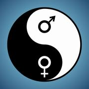 Yin yang man and woman Stock Illustration