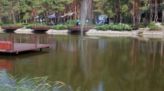Beautiful lake and pines in the hotel Stock Footage