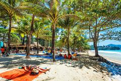 Tourists sunbathing on the sand of a tropical beach in the shade of palm tree Stock Photos