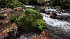 Starvation Creek, Columbia River Gorge NSA, Oregon Stock Footage