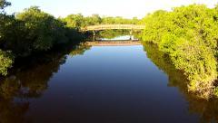 Dock Mangroves Bridge.mp4 Stock Footage