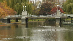 Bridge in Autumn Boston Public Garden Stock Footage