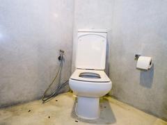 Flush toilet Kuvituskuvat