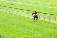 Horse Racing Jockey Track - stock photo