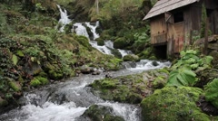Footage of a peaceful scene with a waterfall and a hut Stock Footage