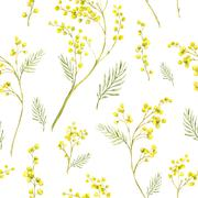 Seamless Pattern with Watercolor Sprig of Mimosa Stock Illustration