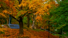 Beautiful autumn day on Toome Hill in Tartu, Estonia Stock Footage