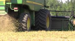 Combine machine harvest ripe dry pea plants grow in farm field Stock Footage