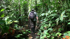 Man in Amazon walks along jungle trail - stock footage