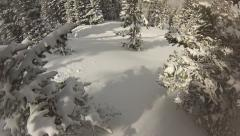 Skier POV skiing on soft untouched powder snow - stock footage