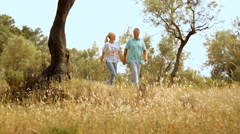 Mature couple walking in countryside Stock Footage