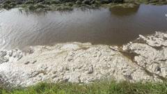 Foam floating on river Stock Footage